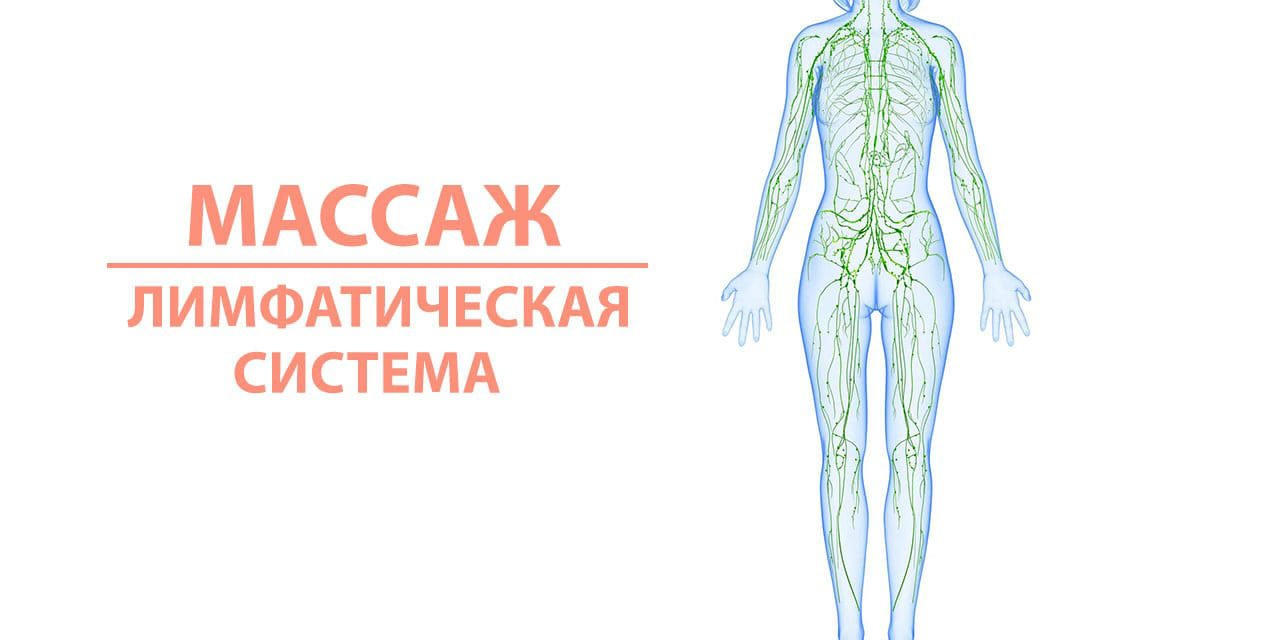 Массаж и лимфатическая система