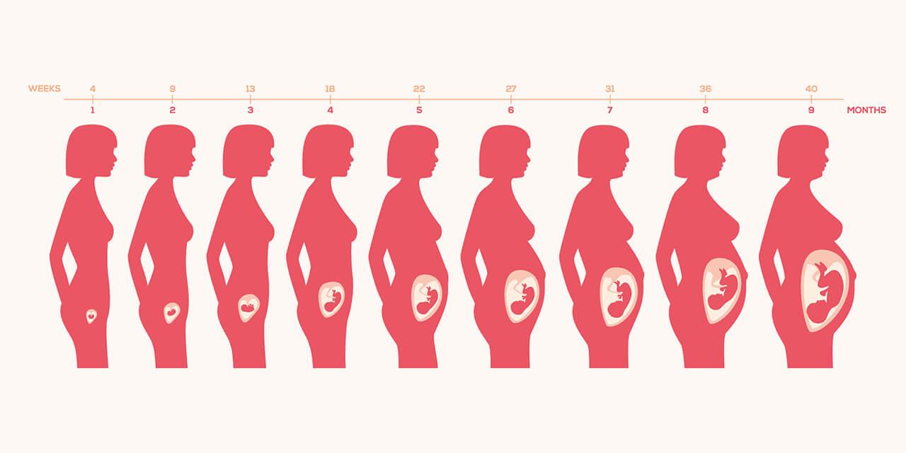 изменения в теле беременной женщины